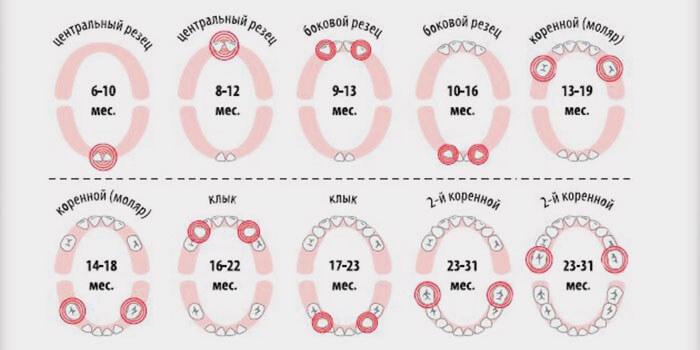 Схема прорезования
