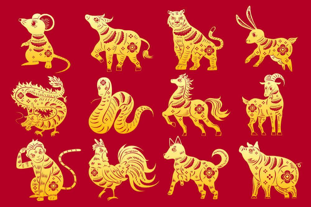 Год какого животного по Китайскому календарю